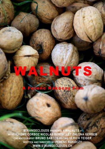 WALNUTS AFFICHE3_v3.jpg